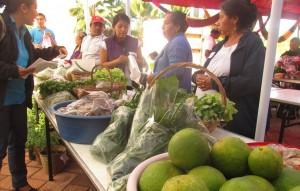 TIANGUIS-MORELOS-Crop