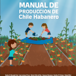 ChileHaberno_Manual
