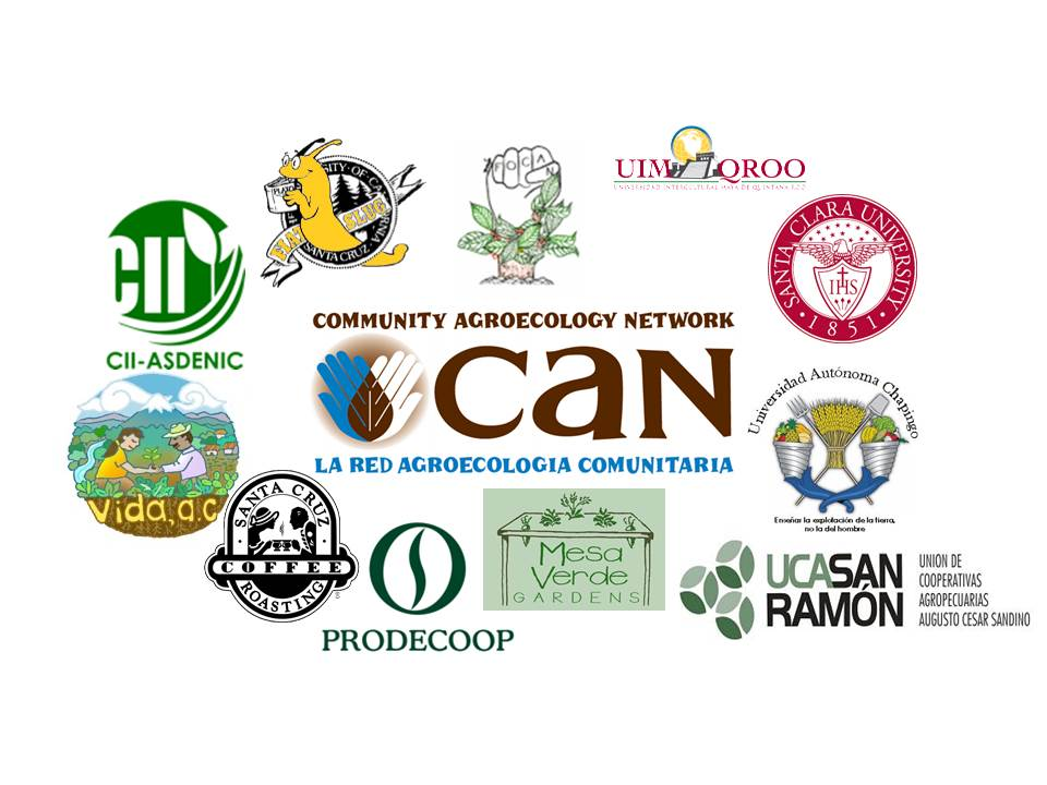 Food security or food sovereignty the